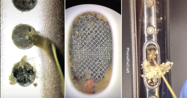 TikTok shows horrifying amount of dirt lurking in your iPhone and earbuds