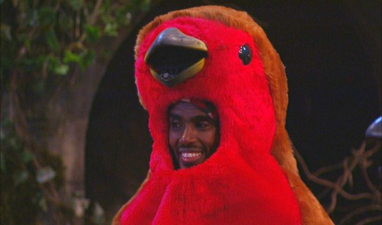 Sir Mo Farah dressed as a parrot