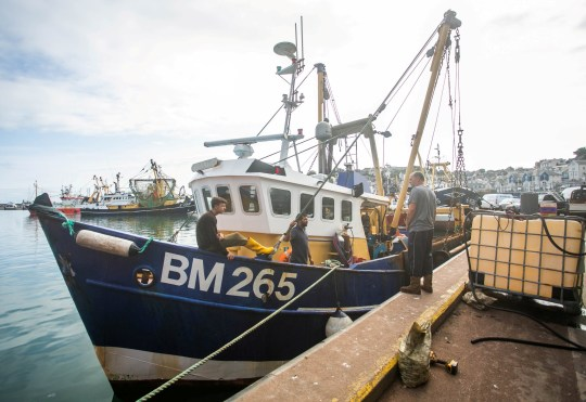 FILE PHOTO from 29/08/2018 of Joanna C at the Brixham Harbour, Devon. See SWNS story NNscallop; One man has been recovered from the water by the Newhaven RNLI lifeboat, found clinging to a lifebuoy. He has been transferred to hospital. The search continues for the two missing crew members after the fishing vessel JOANNA C sank this morning off Newhaven. The search began at 6am on Saturday morning, when HM Coastguard received an EPIRB alert located three nautical miles off the coast at Seaford near Newhaven, from the EPIRB (emergency beacon) from the vessel. HM Coastguard immediately sent the Coastguard rescue helicopter from Lydd, supported by the Coastguard rescue helicopter based at Lee On Solent and RNLI all weather lifeboats from both Newhaven and Eastbourne. Birling Gap Coastguard Rescue Team has been sent to check for sightings from the shore. The fishing vessel JOANNA C is a 45 foot scalloping vessel, registered in Brixham and three people were on board at the time of the sinking.