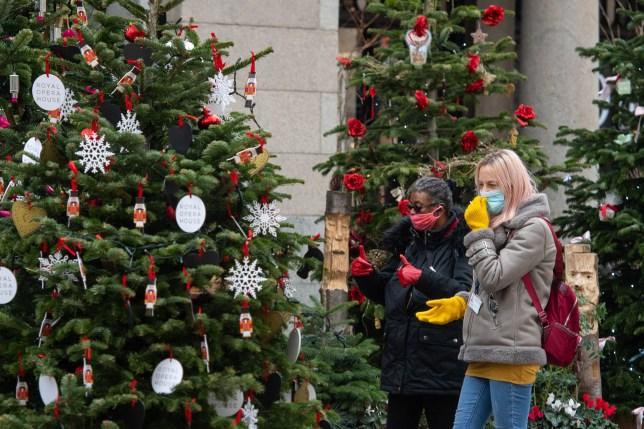 Les gens à la recherche d'un arbre de Noël dans le Covent Garden de Londres