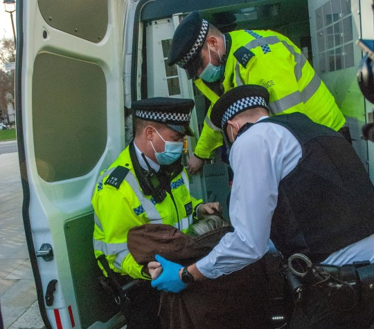 Mandatory Credit: Photo by Johnny Armstead/REX (11036155e) A 72 year old woman, anti-vaccine protestor is arrested outside the gate to the Houses of Parliament. Anti-vaccine protest, London, UK - 24 Nov 2020