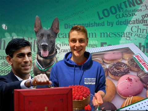 From new Covid tiers to hero dogs, test your knowledge of this week's news