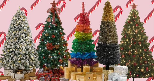 Best places to buy Christmas trees online