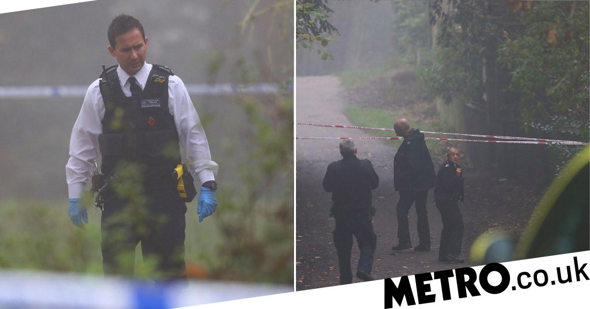 Woman found dead in woodlands on London's Hampstead Heath - metro