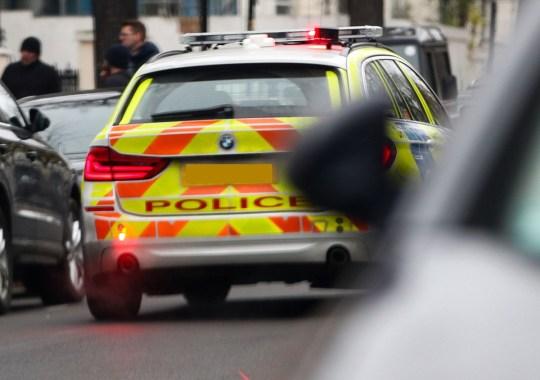 Police car outside Rita Ora's house