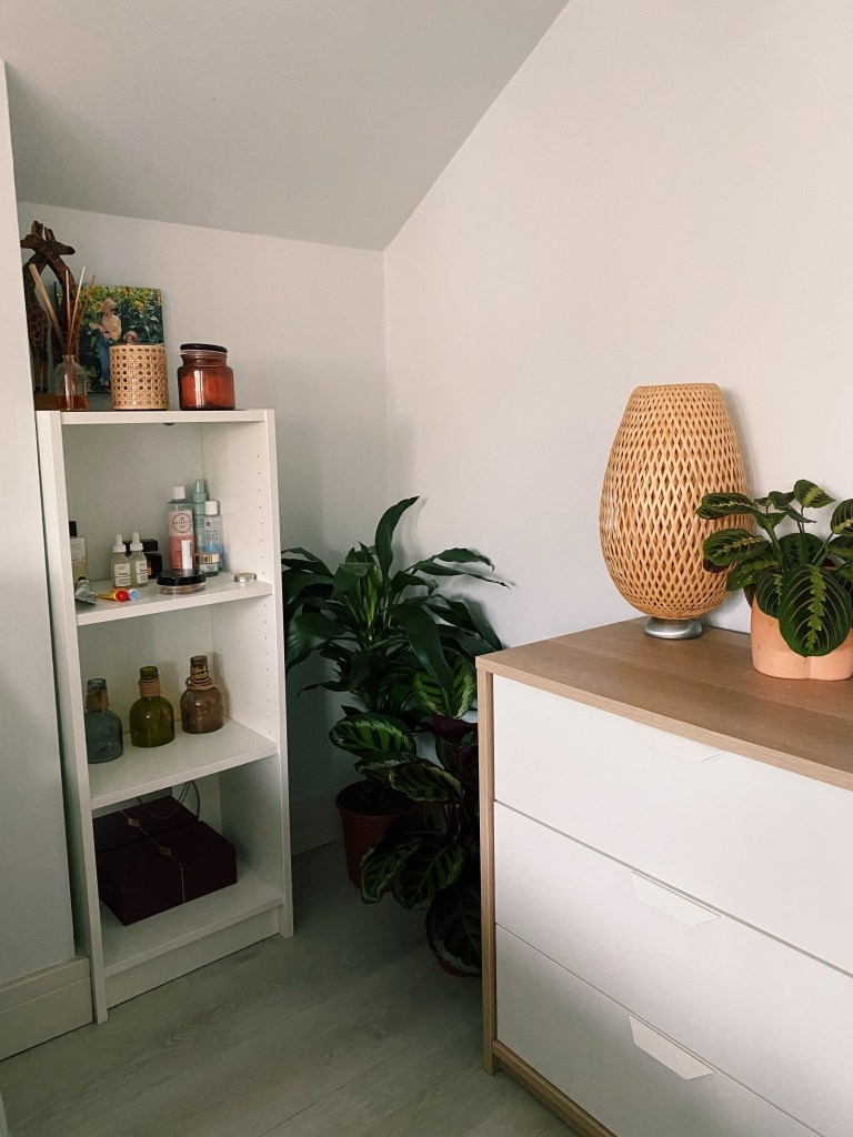 what i rent: rosie - plants in the corner of the bedroom
