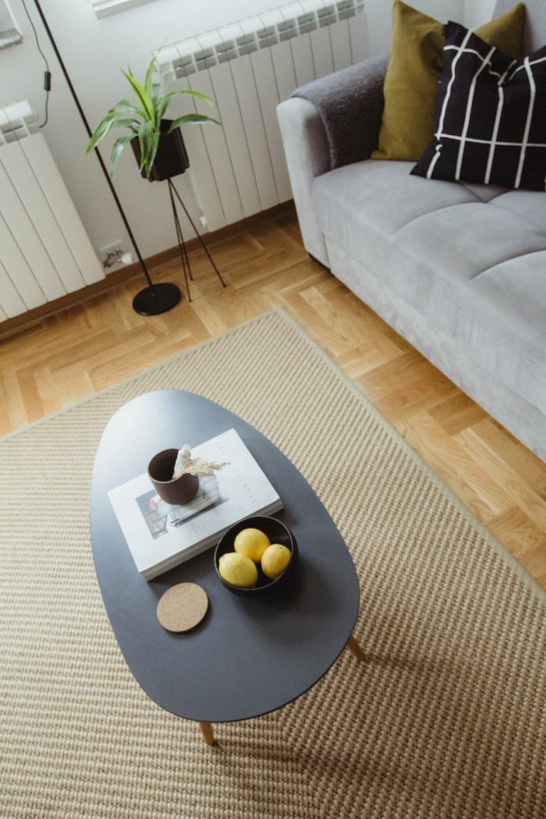 what I Rent: Dario, Belgrade, Serbia - coffee table and sofa in living space