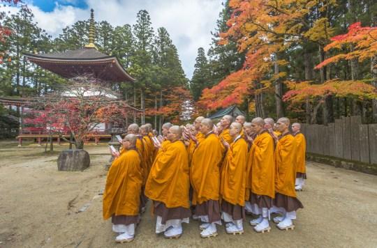 Japan, Koyasan City,Kongobuji Temple, Monks Praying.