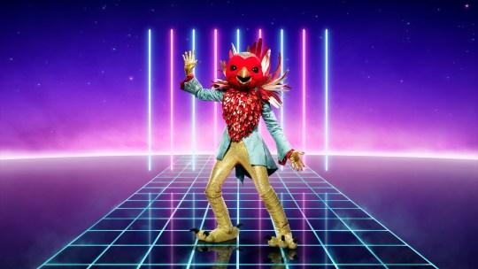 Robin on The Masked Singer UK