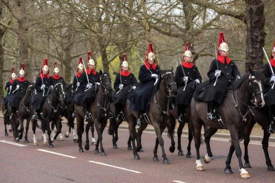 London, UK - March 22, 2019: Household Cavalry Mounted Regiment riding their horses during the Changing the Guards military ceremony in London