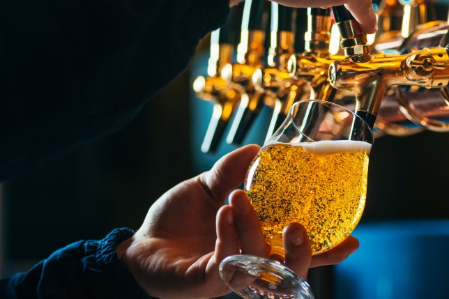 Close up of bartender pouring draft beer in glass