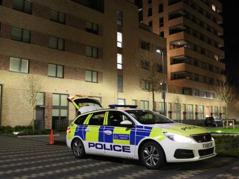 Girl, 2, found dead near body of woman, 25, in west London flat