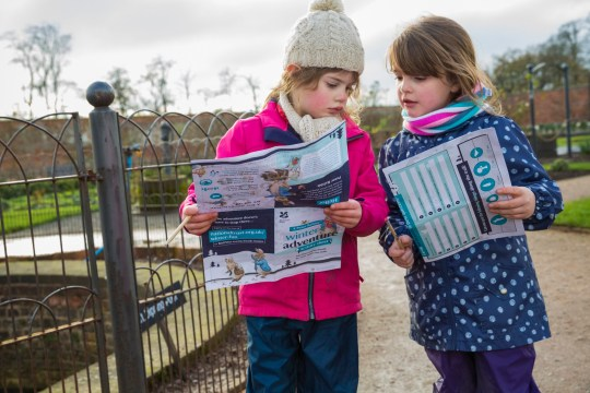 Two little girls hunt for Peter Rabbit on the National Trust trail.