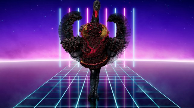 Swan in The Masked Singer