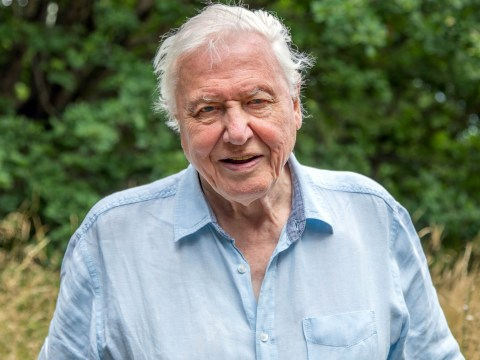 Sir David Attenborough explains why he will no longer be on Instagram