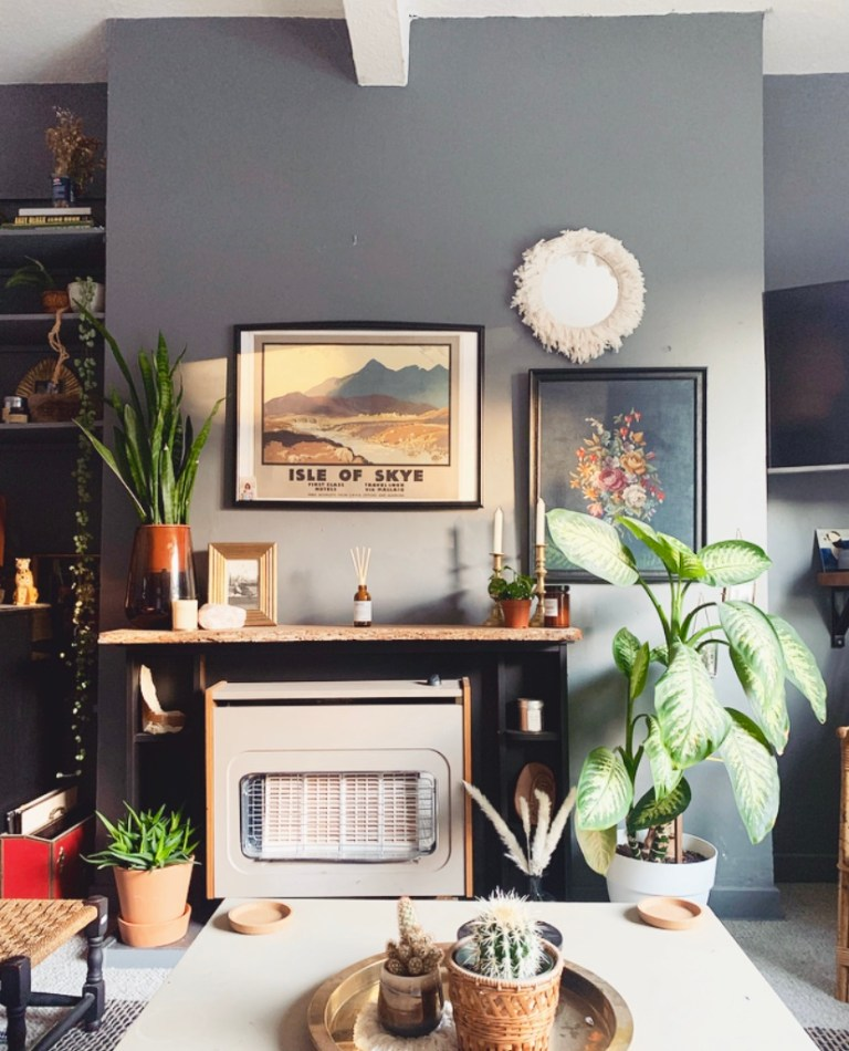 What I Rent: Sally, £600 a month for a two-bedroom flat in Edinburgh - large plants by fireplace