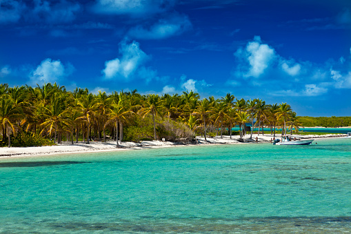 the Island of La Petite Terre