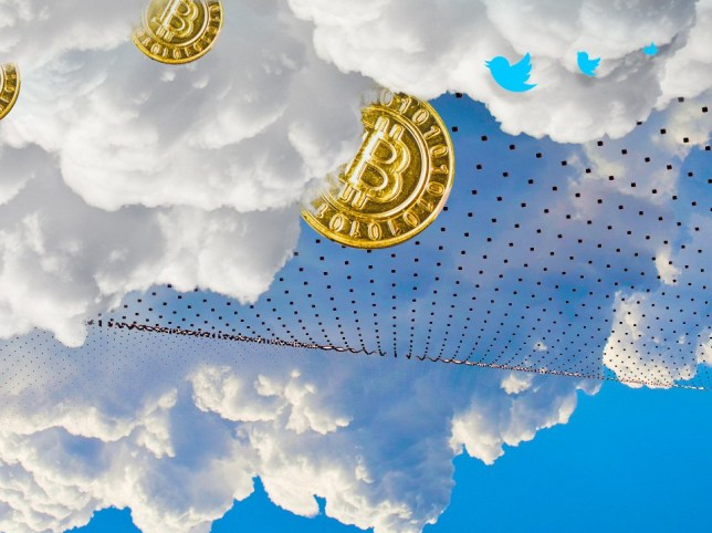What is Twitter's secretive side project based on Bitcoin technology? (Photo: Myles Goode)