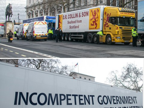 Seafood truckers fined for driving to Downing Street in Brexit protest