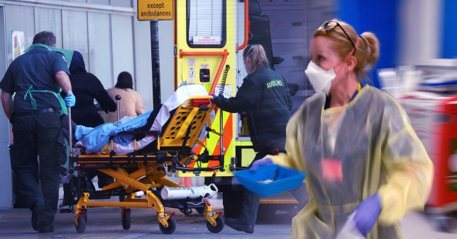 Half of all official UK Covid deaths have taken place since mid November