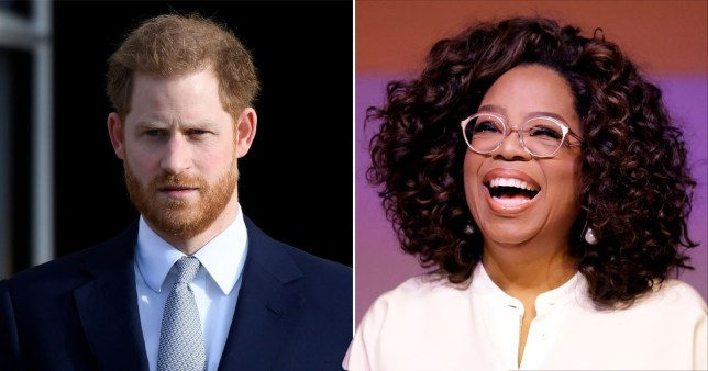 Prince Harry's mental health series with Oprah 'delayed until at least spring'