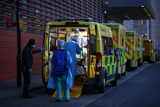 LONDON, ENGLAND - JANUARY 02: A patient is transported out of an ambulance by medics at the Royal London Hospital on January 2, 2021 in London, England. As of December 28th, NHS statistics showed there were 23,823 people in hospital with covid-19, higher than the spring peak of 21,683 recorded on 12 April. Today, the UK reported a further 57,725 people have tested positive for covid-19, a new daily high. (Photo by Hollie Adams/Getty Images)