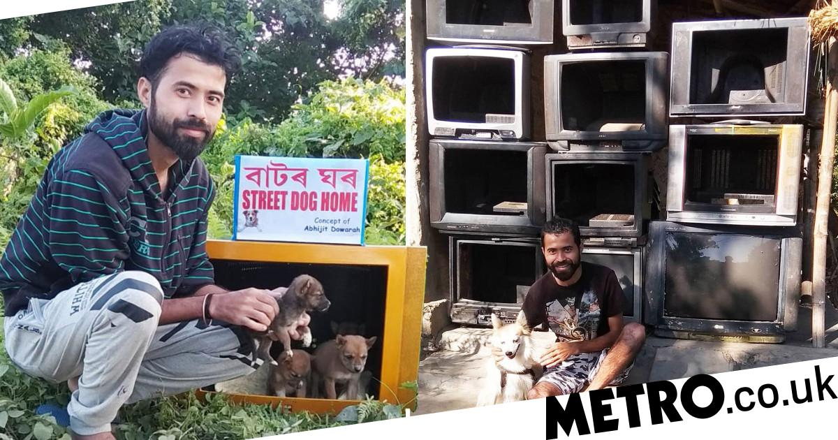 Man turns old TV sets into cosy homes for stray dogs