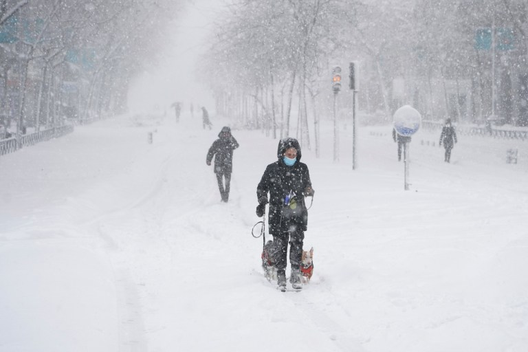 A person walks two dogs during a heavy snowfall in Madrid, Spain, January 9, 2021. REUTERS/Juan Medina
