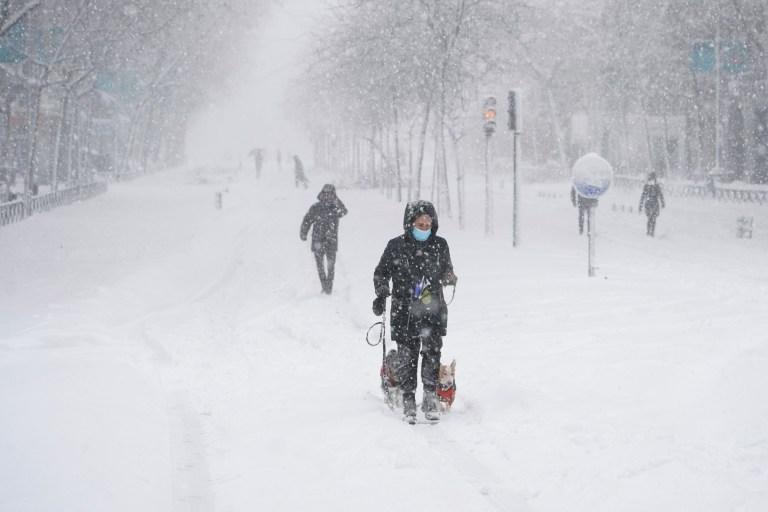 Une personne promène deux chiens lors d'une forte chute de neige à Madrid, en Espagne, le 9 janvier 2021. REUTERS / Juan Medina