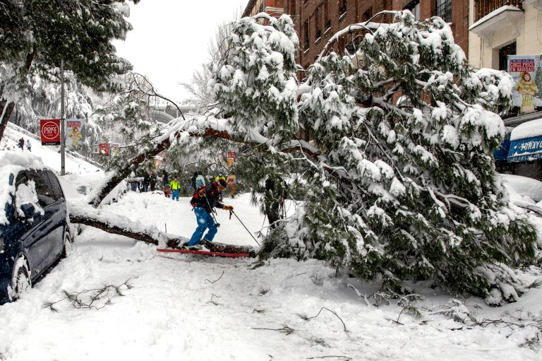 MADRID, SPAIN - JANUARY 09: A woman skiing passes under a fallen tree during heavy snowfall on January 09, 2021 in Madrid, Spain. Spain is on red alert for a second day due to storm Filomena, which has brought unusually cold weather and heavy snowfalls. The storm has caused cancelled services and transport disruption. (Photo by Pablo Blazquez Dominguez/Getty Images)
