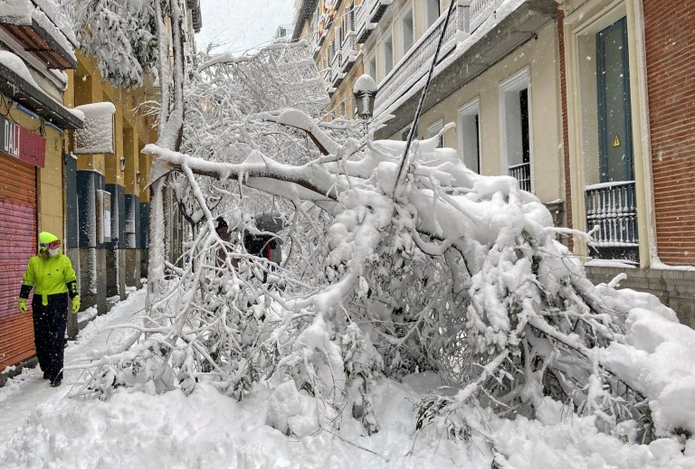 A man walks past trees fallen on a street, during a heavy snowfall in the centre of Madrid, Spain January 9, 2021. REUTERS/Ingrid Melander TPX IMAGES OF THE DAY