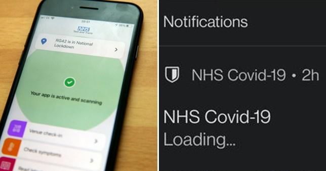 NHS app bug