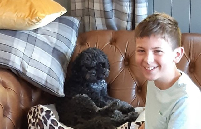 Sheila Sims / CATERS NEWS (PICTURED- Luke has called on the thieves to bring Pippa home) - An autistic schoolboy who was left devastated after his therapy dog vanished has made a heartbreaking plea for his return ??? offering all his birthday money as a reward. Luke Sims, 12, was inseparable from pooch Pippa, a three-year-old Cavopoochon, who helped him manage his autism and anxiety. But after she disappeared in Newark, Notts, two months ago, the family have been inundated by responses to Luke's reward offer ??? including cruel pranksters who called the family and said they would decapitate Pippa unless they paid a 10,000 (GBP) ransom. The pair were so close that Pippa would even help Luke when he felt overwhelmed, calming him when he had night terrors. . - SEE CATERS COPY