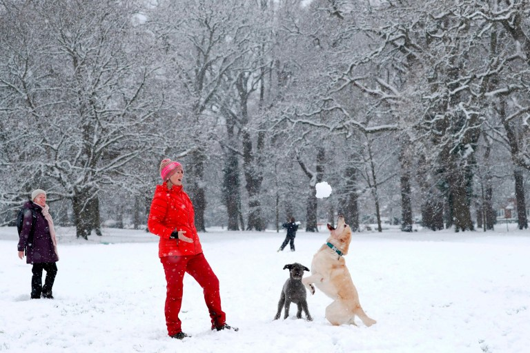 Alison Lawrence throws a snowball for her dog Bluebell to catch on a snow-covered common in Hartley Wintney west of London on January 24, 2021. (Photo by ADRIAN DENNIS / AFP) (Photo by ADRIAN DENNIS/AFP via Getty Images)