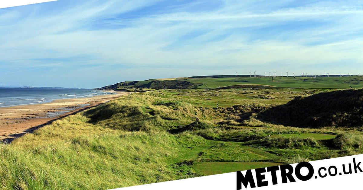 Man claims 'sexual harassment by colleague who spanked him at golf club' - metro