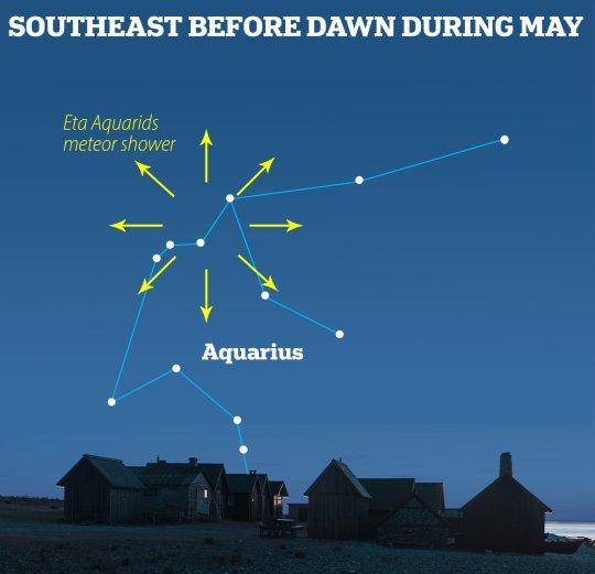 The Eta Aquariids takes its name from the constellation of Aquarius (MailOnline)