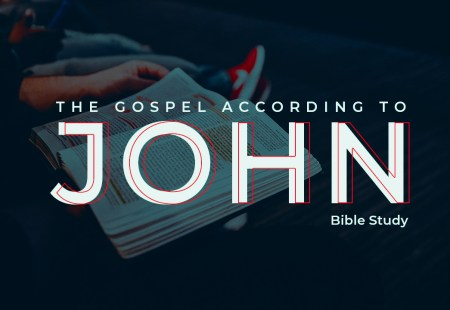 Bible Study – John Chapter 1