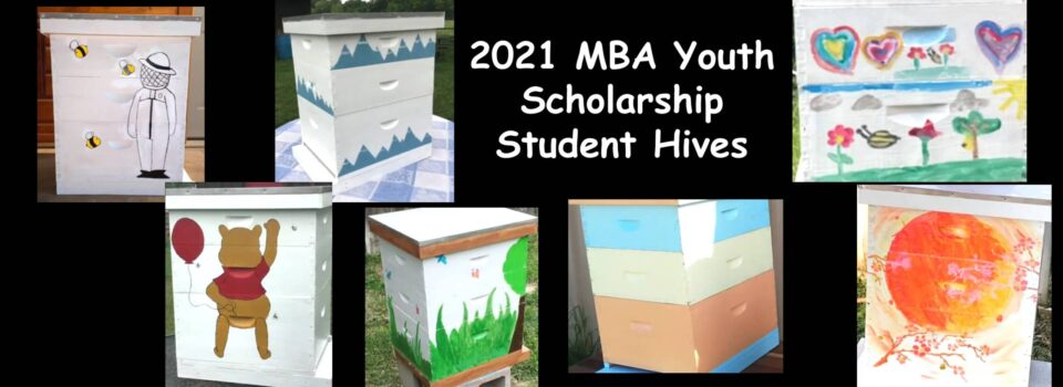 2021-MBA-Youth-Hives2