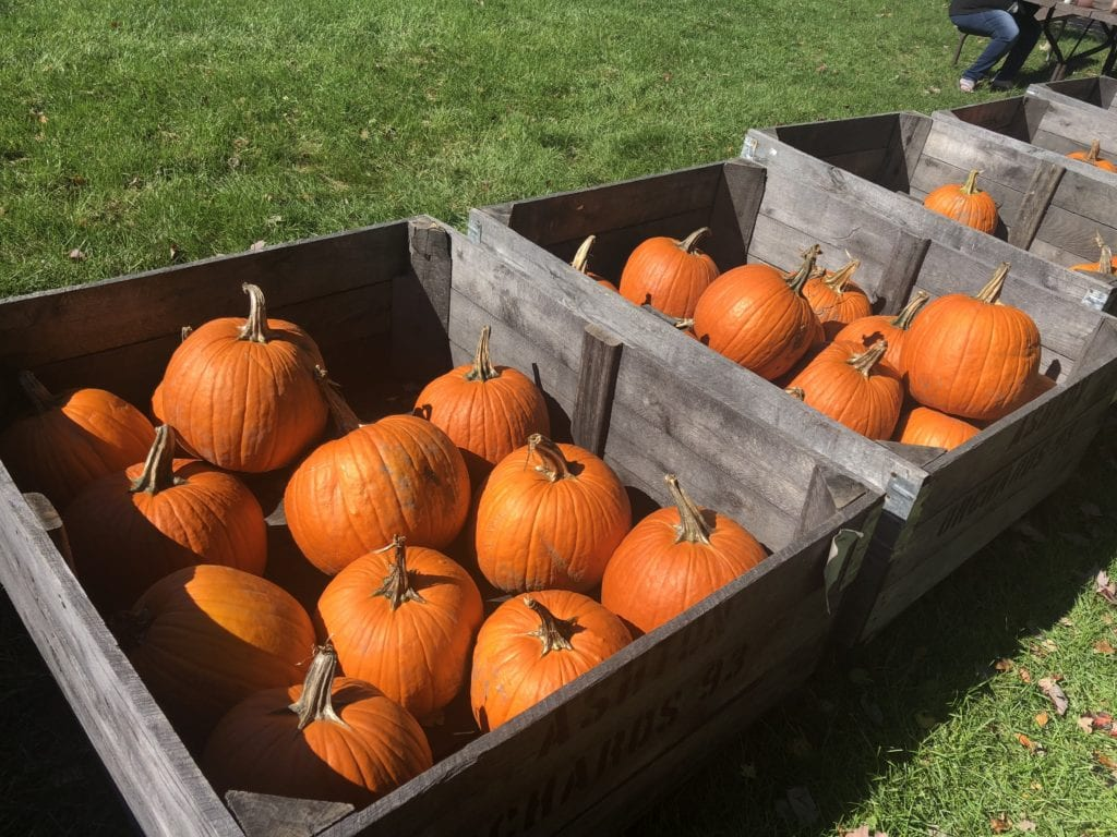 Ashton Orchards Cider Mill sells fruits, vegetables, bakery items and apple cider. They have a bakery, shop, picnic area and children's play area.