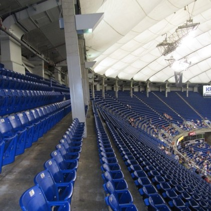 The Metrodome was the first BRAND