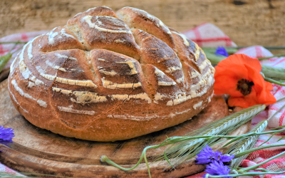 Chemical analysis of sourdough: pH and total titratable acidity (TTA)