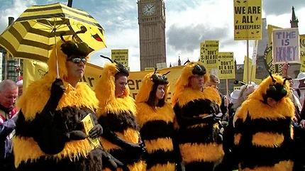 abejas protesta