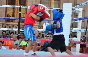 pelea2c
