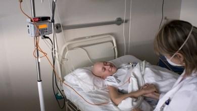 Photo of Investigan tratamiento y cura para la leucemia
