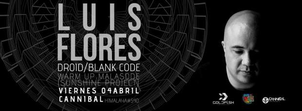 luis flores blank code