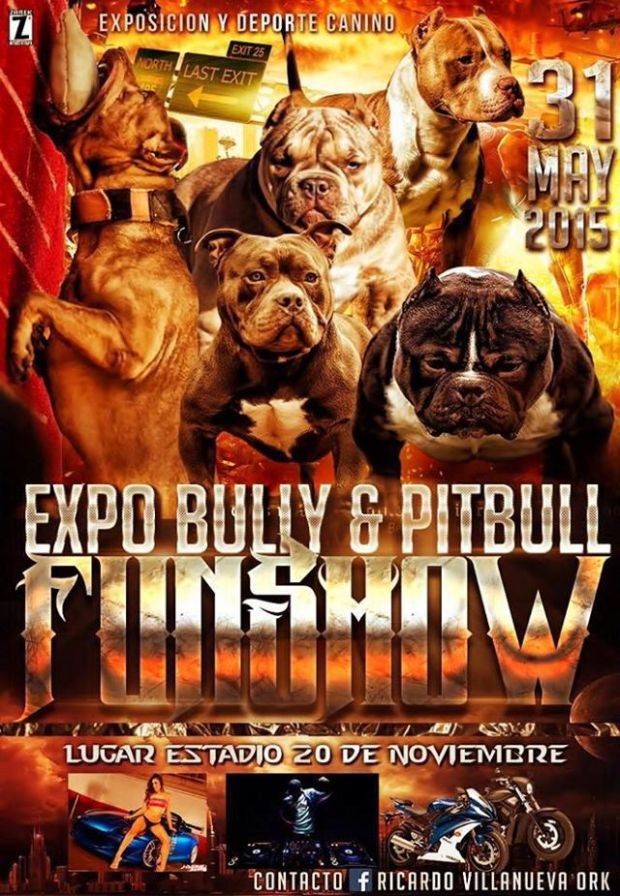 Expo Bully y Pitbull Funshow @ Estadio 20 de Noviembre