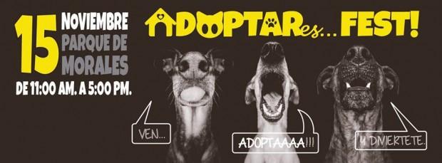 Adoptar Es