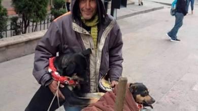 Photo of Salvan del antirrabico a los perros del Sr. Davir, ya tienen hogar