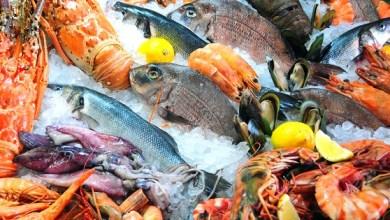 Photo of DIF ofrecerá venta de productos del mar a bajo precio