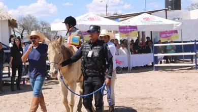 Photo of El DIF municipal reactiva el servicio de equinoterapia